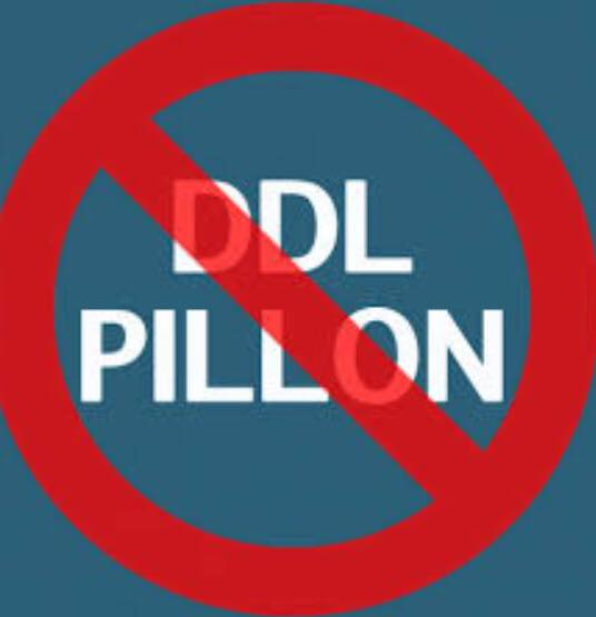 DDL PILLON