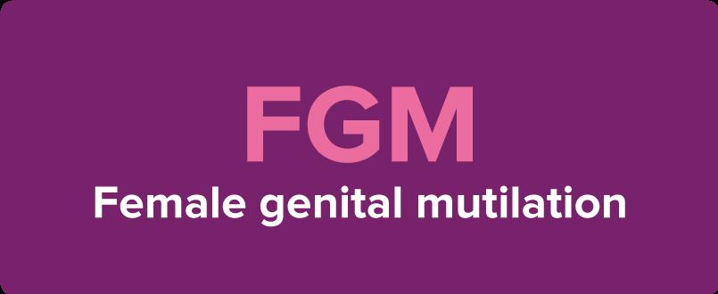 FGM-0100